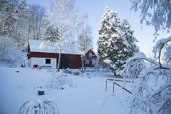 Logen-från-öster-i-snö